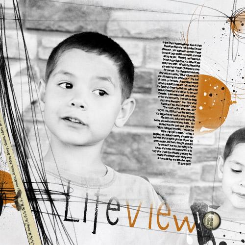 LifeViewLR